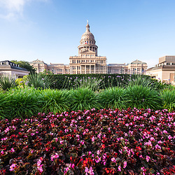 Austin Texas State Capitol Building flowers. The Texas State Capitol was built in 1888 and is a historic landmark.