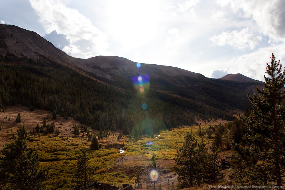 A stream passes through shrubs  lit by sunshine in the valley near Independence Pass, Colorado.