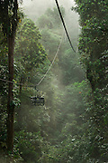 Cable Car<br /> Mashpi Rainforest Biodiversity Reserve<br /> Pichincha<br /> Ecuador<br /> South America