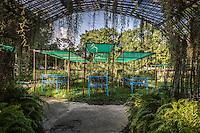 Nursery in the grounds of Kandawgyi Lake, Yangon, Burma.