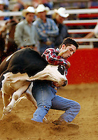 Tyler Jones of Reno, Nevada ropes a calf during the calf-roping competition at the annual Rodeo of the Ozarks in Springdale, Arkansas.