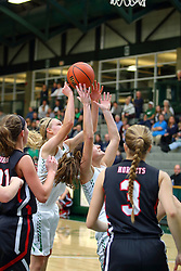 19 January 2017: IHSA Girls Basketball game during the McLean County Tournament at Shirk Center in Bloomington Illinois - Girls Semi-finals Eureka Hornets v Heyworth Hornets