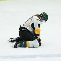 4th year forward Emma Waldenberger (9) of the Regina Cougars in action during the Women's Hockey Homeopener on October 7 at Co-operators arena. Credit: Arthur Ward/Arthur Images
