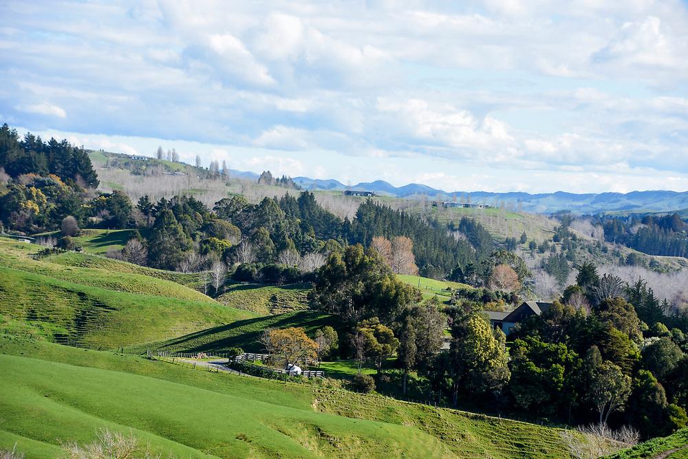 Rolling hills around Napier, New Zealand