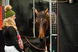 Springen, Showjumping, Saut d'obstacles<br /> Jumping Indoor Maastricht 2018<br /> © Hippo Foto - Sharon Vandeput<br /> 25/11/18