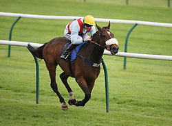 Nam Hai ridden by William Twiston-Davies wins the 2.50 The Most Reliable Bet DG Taxis Handicap Stakes - Mandatory by-line: Jack Phillips/JMP - 22/05/2016 - HORSE RACING - Nottingham Racecourse - Nottingham, England - The Nottingham Post Community Day In Association With MacMillan