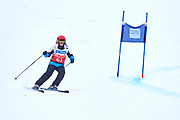 Schladming, Austria - 2017 March 19: Laurence Carlier D'Odeign from Belgium (63) competes in Alpine Skiing Competition while Special Olympics World Winter Games Austria 2017 on the &quot;Sepp-Walcher-Downhill&quot;<br /> (Slope 32) near the &quot;Tauernalm&quot; in Rohrmoos on March 19, 2017 in Schladming, Austria.<br /> <br /> Mandatory credit:<br /> Photo by &copy; Adam Nurkiewicz / Mediasport<br /> <br /> Adam Nurkiewicz declares that he has no rights to the image of people at the photographs of his authorship.<br /> <br /> Picture also available in RAW (NEF) or TIFF format on special request.<br /> <br /> Any editorial, commercial or promotional use requires written permission from the author of image.<br /> <br /> Image can be used in the press when the method of use and the signature does not hurt people on the picture.