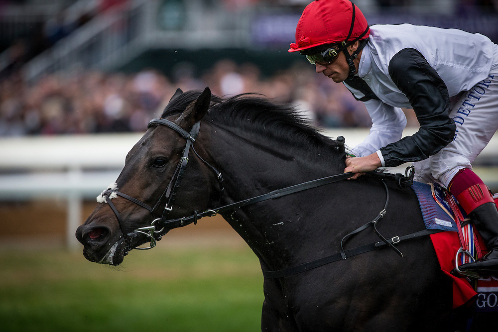 October 31, 2015: Golden Horn with Frankie Dettori races in the Breeders' Cup Turf at Keeneland Race Track in Lexington, Kentucky. Evers/ESW/CSM