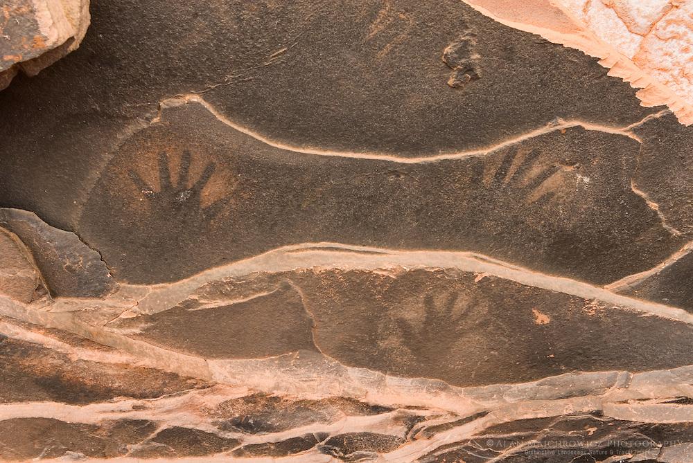 Anasazi handprints on ceiling of ruins, Road Canyon of Grand Gulch Primitive Area, Cedar Mesa Utah Bears Ears National Monument