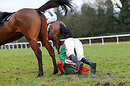 Plumpton, UK, 16th January 2017<br /> Bottoms up - Tom O'Brien parts company with Talk Of The South during the jasonhallracing.com 'Sharing Success' Handicap Chase at Plumpton Racecourse.<br /> &copy; Telephoto Images / Alamy Live News