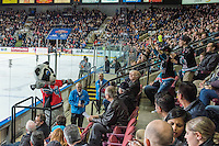 KELOWNA, CANADA - JANUARY 30: Rocky Raccoon throws t-shirts to the crowd on January 30, 2016 at Prospera Place in Kelowna, British Columbia, Canada.  (Photo by Marissa Baecker/Shoot the Breeze)  *** Local Caption *** Rocky Raccoon; mascot;