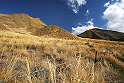 a farm fence marks the boundary of through the golden grass and golden hills of the Lindis Pass, deep in McKenzie Country, New Zealand