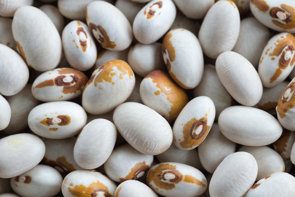 Dried Kenearly Yellow Eye beans.