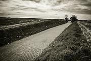 Holleweg cobbles, Tour of Flanders 2014