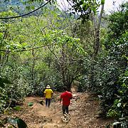 FST, Volcan, Chiriqui - Panama 04-03-2016<br /> Photography © Aaron Sosa