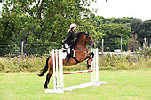 Ring 03 - Show Jumping