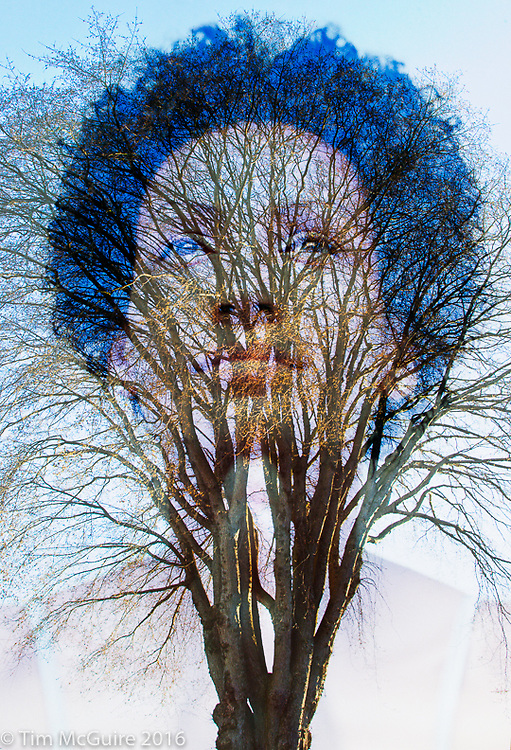 Portrait of Grace with tree composite. I'd always thought that tree look like some big bushy hair or an afro so one day I decided to combine the two images. The image of Grace Goodsen was shot in a yoga / meditation studio and the tree is on Queen Anne Hill in Seattle, Washington.