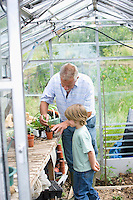 Boy planting flowers with grandfather in greenhouse