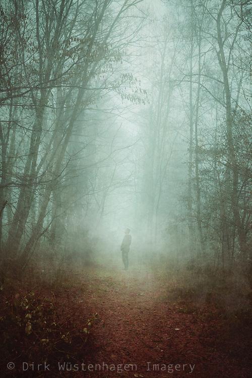 Mann auf Waldweg bbei Nebel, Wuppertal, Deutschland