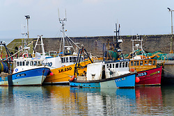View of fishing boats in harbour at Port Seton on Firth of Forth in East Lothian, Scotland, UK.