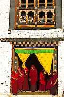 Buddhist monks watching the  Paro Tsechu (festival), Paro, Bhutan