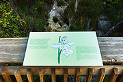 Interpretive sign at Cave and Basin National Historic Site, Banff National Park, Alberta, Canada