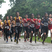 62nd SAA Cross Country Championships 2013