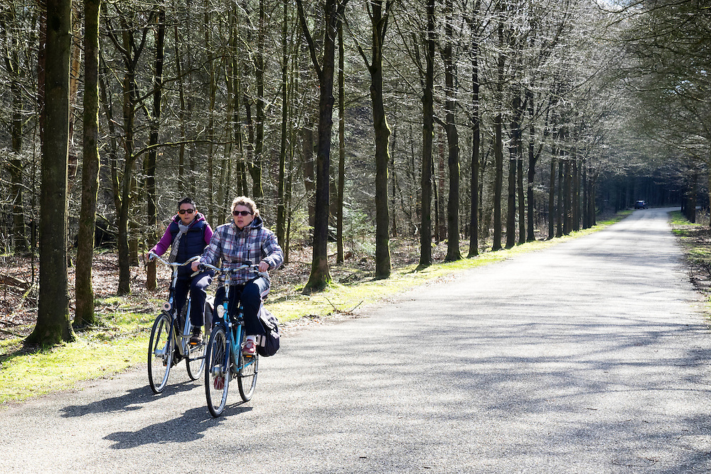 In Maarsbergen rijden twee vrouwen op de fiets door het bos.<br /> <br /> In Maarsbergen two women ride a bicycle through the woods.