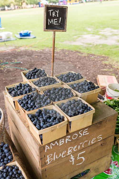 Locally grown blueberries on display at the weekly farmers market in Marion Square June 28, 2014 in Charleston, SC.