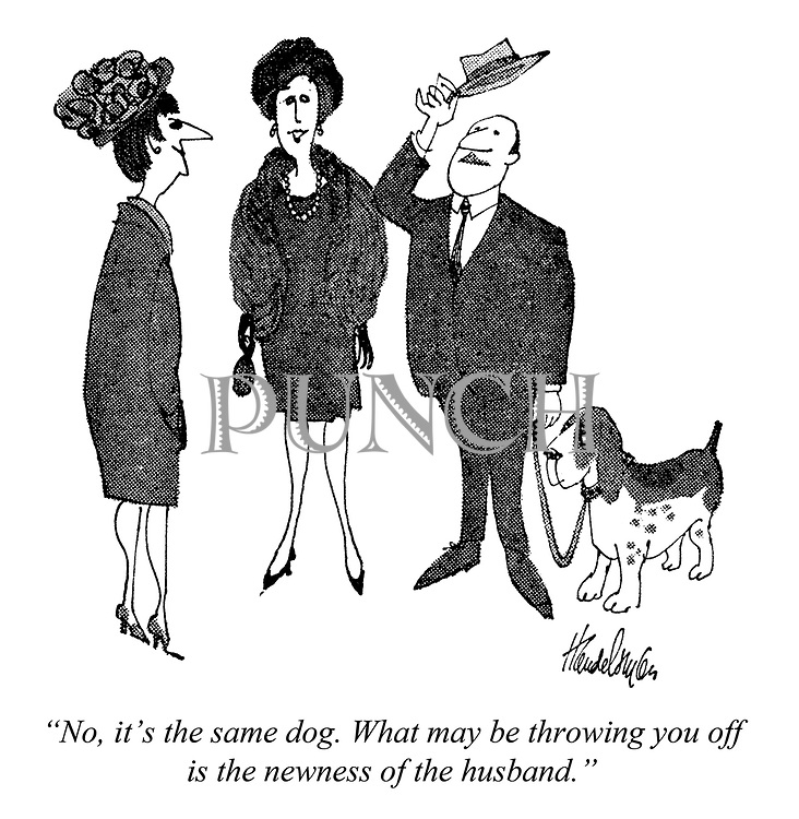 """No, it's the same dog. What may be throwing you off is the newness of the husband."""