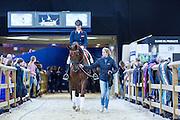 Madeleine Witte Vrees - Charmeur<br /> Jumping Amsterdam 2016<br /> © DigiShots