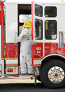 Wurtsboro, New York -A Wurtsboro firefighter wearing a Sparky the Fire Dog costume gets ready to step down from a fire truck at the Wurtsboro Airport for the annual Fly In - Drive- In Breakfast on Oct. 9, 2011.