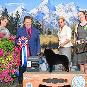Pocatello Kennel Club 06/16/2019