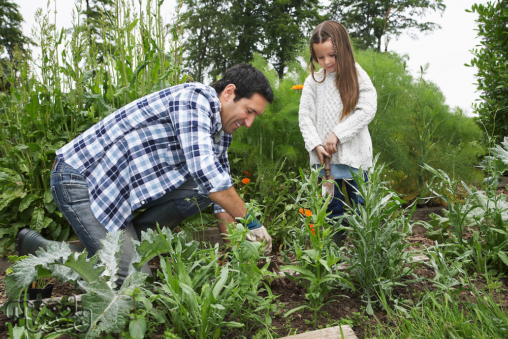 Father and daughter (5-6) gardening