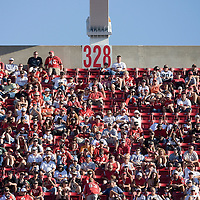 04 November 2007: Fans of Tampa Bay Buccaneers are seen during the Tampa Bay Buccaneers 17-10 victory over the Arizona Cardinals at the Raymond James Stadium in Tampa, Florida, USA.