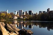 Mirror in Central Park