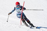 Tecnica Cup Finals at Gunstock Ladies 1st run February 18, 2011.