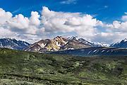 Alaska Range, Denali National Park, Alaska, USA.
