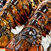 Caribbean Rock Lobster Tails on Ice at Public Market Center in Seattle, Washington