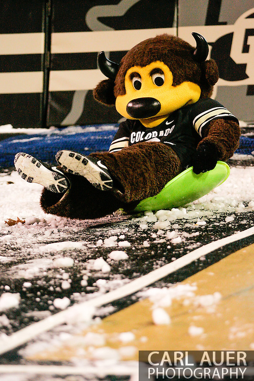 November 23rd, 2013:  The Colorado mascot Chip the Buffalo slides on some snow in the fourth quarter of the NCAA Football game between the University of Southern California Trojans and the University of Colorado Buffaloes at Folsom Field in Boulder, Colorado