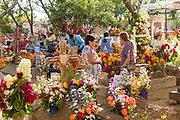 People socialize among graves decorated with elaborate floral pedal tapestries in honor of the deceased at the San Antonino Castillo cemetery during the Day of the Dead Festival known as Día de Muertos on November 3, 2013 in San Antonino Castillo Velasco, Oaxaca, Mexico.