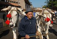 Europe Livestock