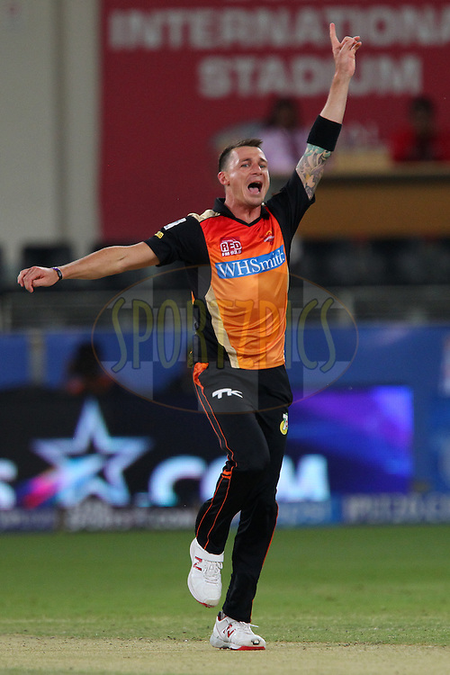 Dale Steyn of the Sunrisers Hyderabad appeals for the wicket of Corey Anderson of the Mumbai Indians during match 20 of the Pepsi Indian Premier League Season 2014 between the Mumbai Indians and the Sunrisers Hyderabad held at the Dubai International Stadium, Dubai, United Arab Emirates on the 30th April 2014<br /> <br /> Photo by Ron Gaunt / IPL / SPORTZPICS