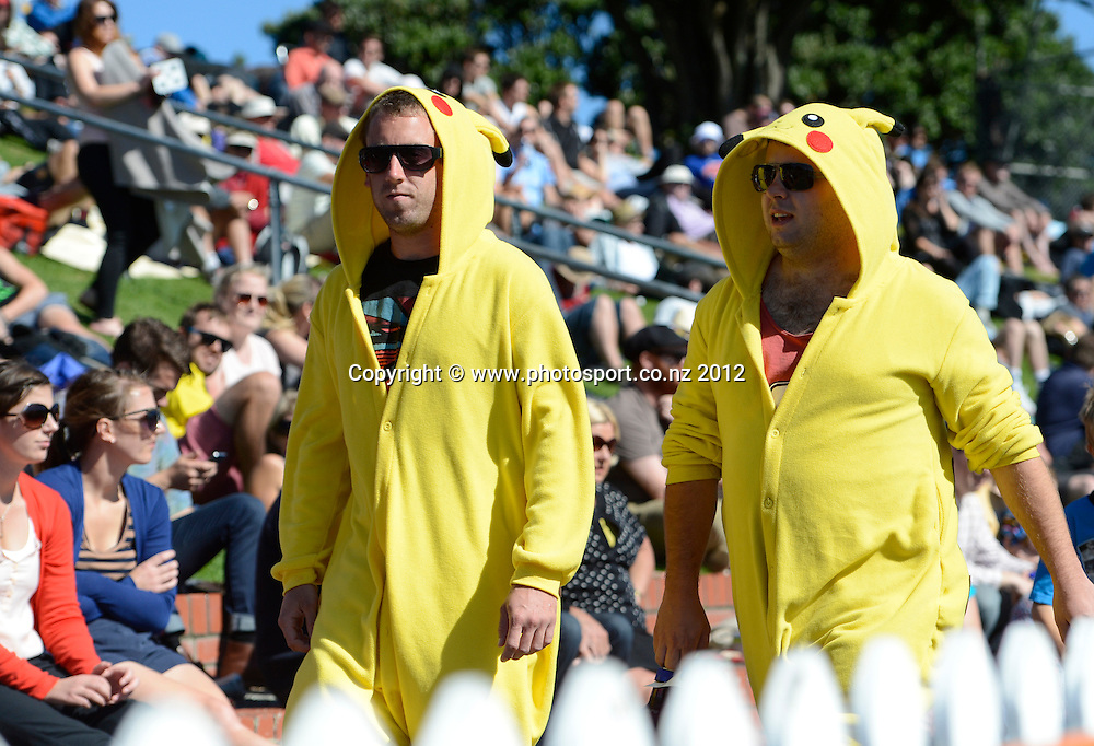 Cricket fans. Test match cricket. Third Test, Day 3. New Zealand Black Caps versus South Africa Proteas, Basin Reserve, Wellington, New Zealand. Sunday 25 March 2012. Photo: Andrew Cornaga/Photosport.co.nz
