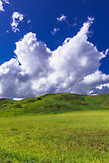 Green pasture under blue sky and clouds in Wheeler Canyon, Ventura County, California