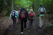 Walkers blur as they walk through an English wood during a weekend ramble.