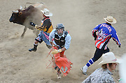 Bull fighters Warren Burrier and Jake Spencer distract the bull as bull rider Cyler Doremus runs to safety during the CPRA Rodeo at the Boulder County Fairgrounds on Sunday. Go to timescall.com for more photos.<br /> <br /> Matthew Jonas / Staff Photographer Aug. 2, 2015
