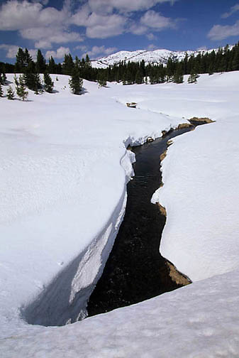 Yellowstone National Park, Creek in Winter.
