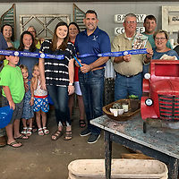 A Monroe County Chamber of Commerce ribbon cutting was held for the Gray Antler, located at 118 Pine St. in Nettleton.