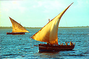 KENYA, EAST COAST a coastal sailing dhow off Lamu Island along the Indian Ocean coast of Kenya, with its traditional Swahili culture